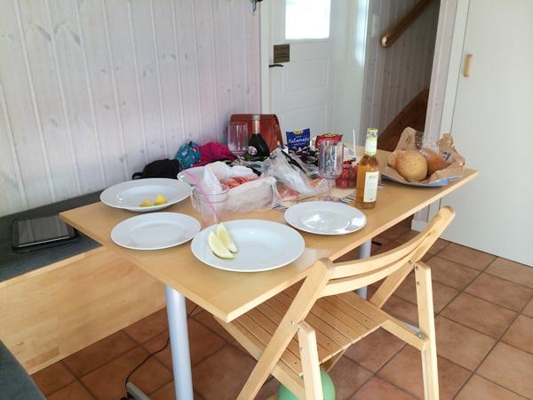 camping, varberg, apelviken, västkusten