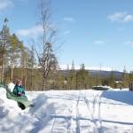skidresor, Idre, fjällen, stuga