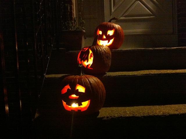 pumpor, halloween, höstlov
